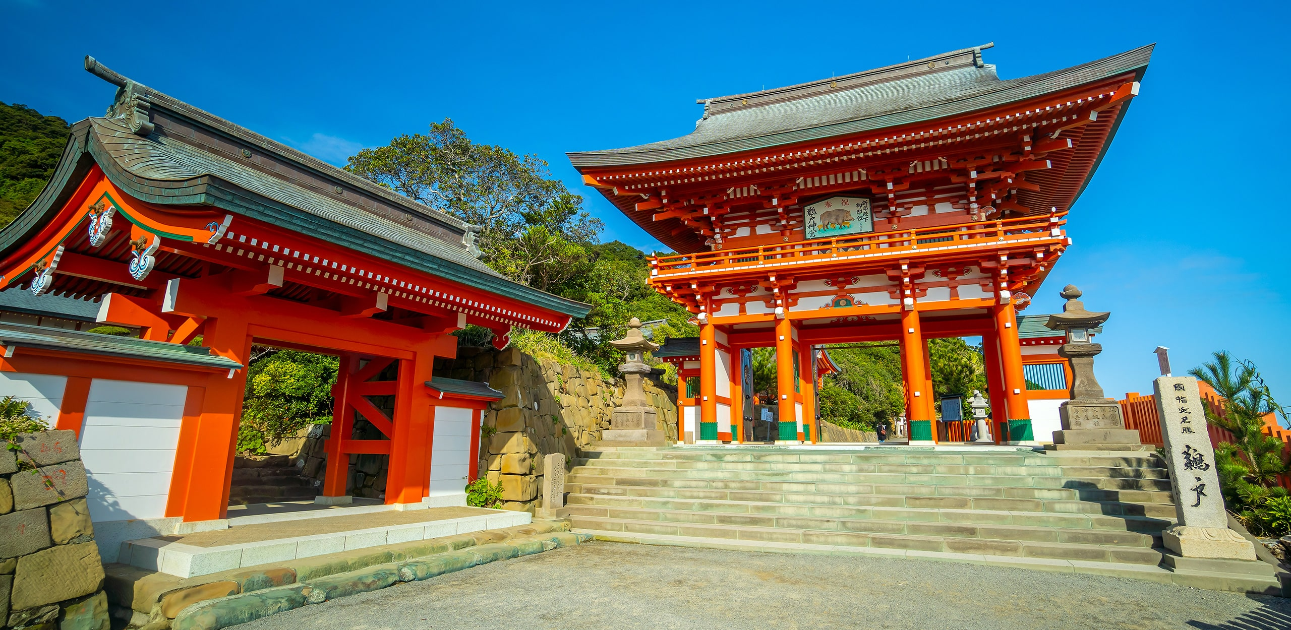 vyvo holiday 2021 japan img2